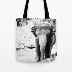 Dangerously Delicate Tote Bag