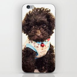 Coco the Puppy iPhone Skin