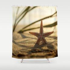 Starfish Still life on the beach Shower Curtain