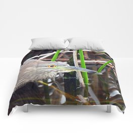 Juvenile Black Crowned Night Heron Comforters