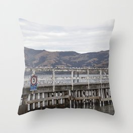 Slow Terns of Akaroa Throw Pillow