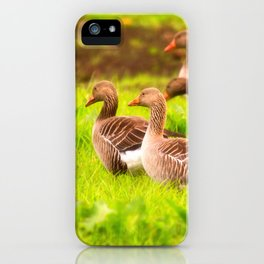 Wild geese in the march iPhone Case