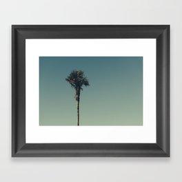 Vintage Film style Palm tree Framed Art Print