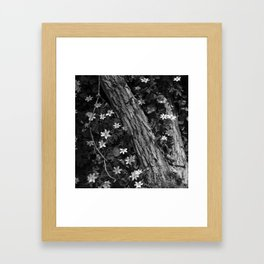 Faster than the speed of darkness Framed Art Print