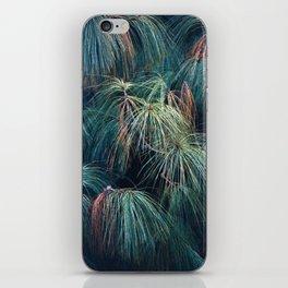 Pine Needle Fireworks iPhone Skin