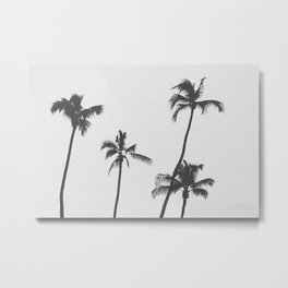 PALM TREES XIX / Hawaii Metal Print