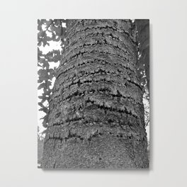 Black and White Tree Trunk Metal Print