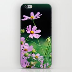 Cosmos  iPhone & iPod Skin