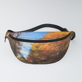 autumn forest yellow trees autumn landscape Borovo Bulgaria Plovdiv Fanny Pack