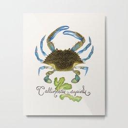 Crab I: Blue Crab Metal Print
