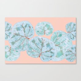 Tropical Sea Grape Leaves Canvas Print