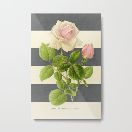 botanical stripes I - gray Metal Print