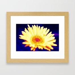 neon daisy Framed Art Print