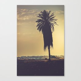Andalusian sunset with silhouette palm tree. Retro toned Canvas Print