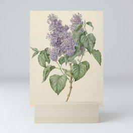 Vintage Lilac Botanical Print by Maria Geertruyd Barbiers-Snabilie Mini Art Print