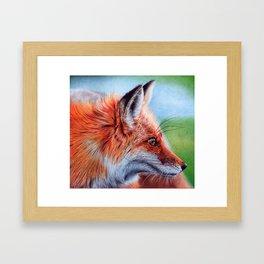 Fox Head - Ballpoint pen Framed Art Print