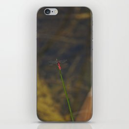 A Red Dragonfly Western Australia iPhone Skin