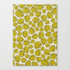 Yellow Floral Pods Canvas Print