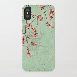 Mint Julep iPhone Case