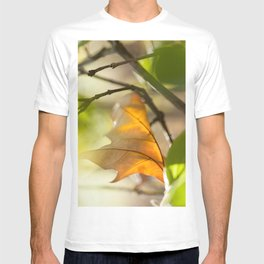 Winter leaf in the wind T-shirt