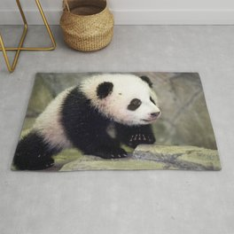 Extremely Cute Little Baby Panda First Steps Ultra HD Rug