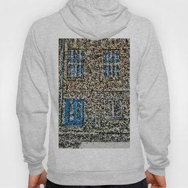 crystalized facade Hoody