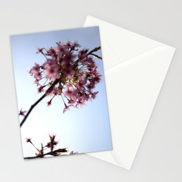 Pink Apple Blossom Stationery Cards