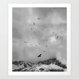 Sacred Flight Art Print