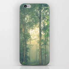 Beyond the Mist Lies Another World iPhone & iPod Skin