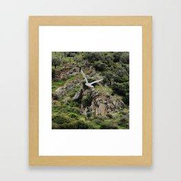 The Gull Framed Art Print