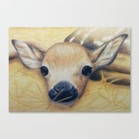 bambi Canvas Prints featuring Bambi by Erin Schamberger