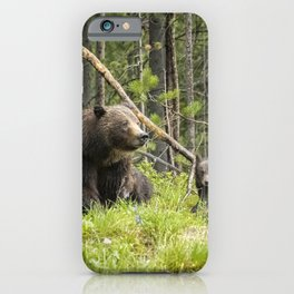 Charting the Course - Grizzly 399 with Her Four Cubs iPhone Case