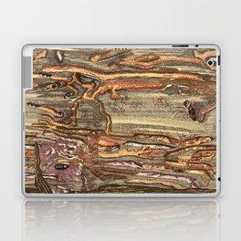 Worm Eaten Wood Laptop & iPad Skin