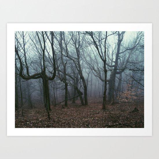 Foggy Max Patch Woods Art Print