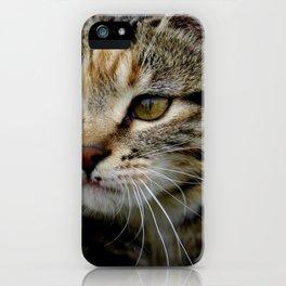Gor Fur It iPhone Case