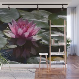 Pink Water Lily Wall Mural