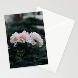 pallid. Stationery Cards