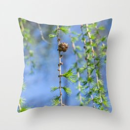 Young larch - Nature photography Throw Pillow
