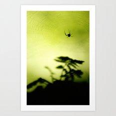weave me a web Art Print