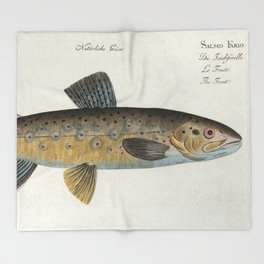 Vintage Illustration of a Brown Trout (1785) Throw Blanket