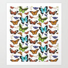 Butterflies - colourful pattern Art Print