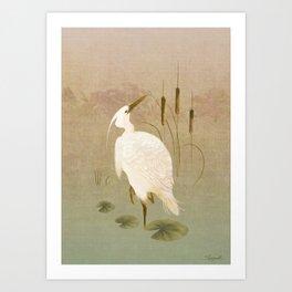 White Heron in Bulrushes Art Print