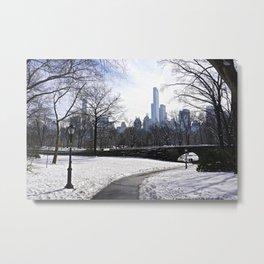 Central Park snow scene Metal Print