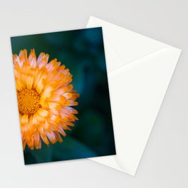 Yellow and Orange Calendula officinalis Oopsy Daisy Flower Stationery Cards
