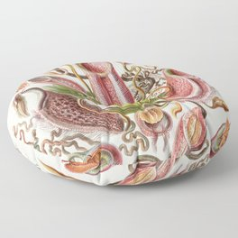 Ernst Haeckel Tropical Pitcher Plant  Floor Pillow