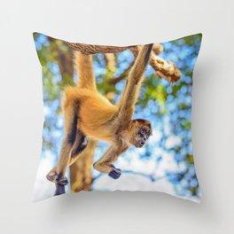 Just Hanging Around Throw Pillow
