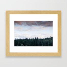 Alaska Trees in Denali National Park Framed Art Print