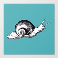 snail Canvas Prints featuring Snail by Aubree Eisenwinter
