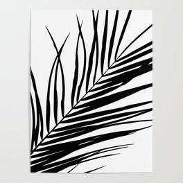 Palm Leaves I Black & White Poster