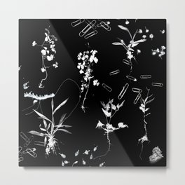 Plants & Paper clips Photogram Metal Print